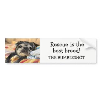 Bumblesnot bumper sticker: Rescue is best breed! Bumper Sticker