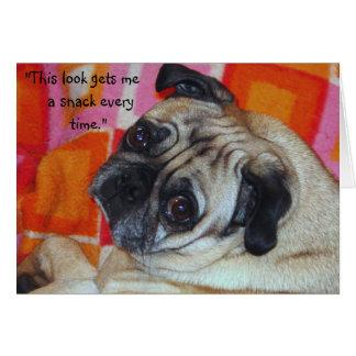 Canine Manipulation Note Card