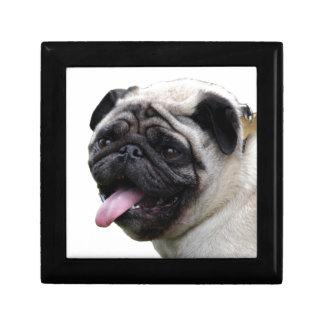 Handsom white Pug photo accessories, add names Jewelry Boxes