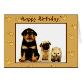 Happy Birthday puppies greeting card