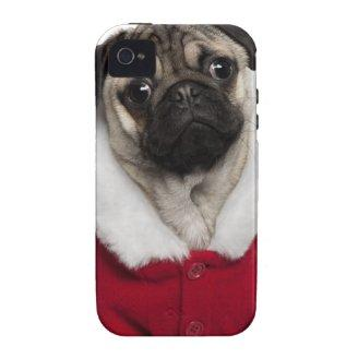 Pug puppy (6 months old) wearing a Christmas Case-Mate iPhone 4 Cases
