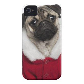 Pug puppy (6 months old) wearing a Christmas iPhone 4 Case-Mate Cases