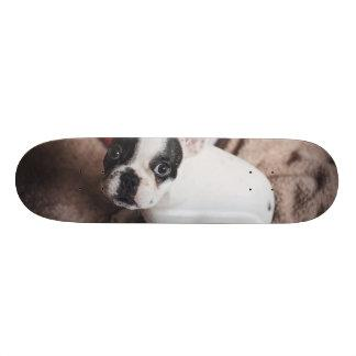 Santa claus dog -funny pug - dog claus skateboard deck