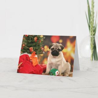 A very Merry Chinese Pug Christmas Holiday Card