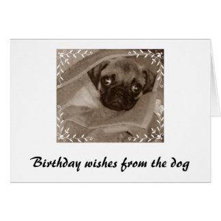 Birthday wishes from the dog card