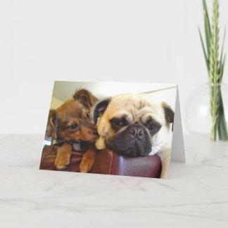Bumblesnot greeting card: I'm here if you need me Card