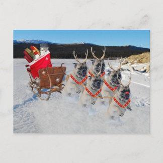 Christmas Pug Dogs Pulling a Sleigh Holiday Postcard