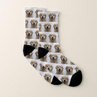 Dog   Photo Retriever Puppy Pet Socks