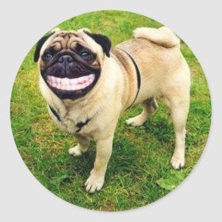 dog smile pug classic round sticker