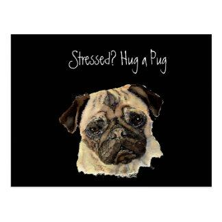 Funny, Stressed? Hug a Pug!, Dog, Pet, Animal Postcard
