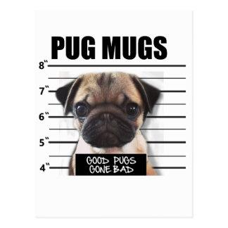 good pugs gone bad postcard