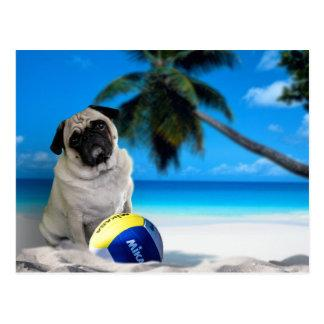 Misha Pug at the Beach Postcard