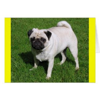 Pug Puppy Dog  Blank Yellow Note Card
