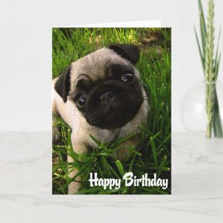 Pug Puppy Dog  Happy Birthday Card - Verse inside
