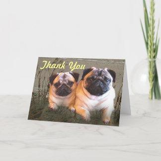 Pugs and Kisses Thank You Card