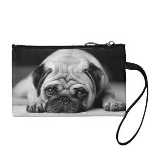 Sad Pug Coin Wallet