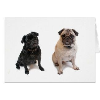 Two pugs one beige one black card